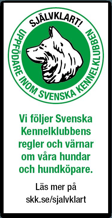 Vi följer Svenska Kennelklubbens regler och värnar om våra hundar och hundköpare